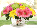 Ferns N Petals: Birthday Delights Starting At AED 149