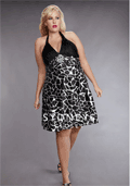 Sydney's Closet: Ziba Dress For $69