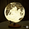 Coocepts: Globe Light  Just $149